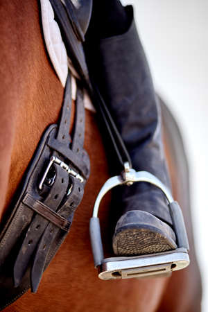 stirrup: Dressage rider and horse closeup boot in stirrup detail photograph