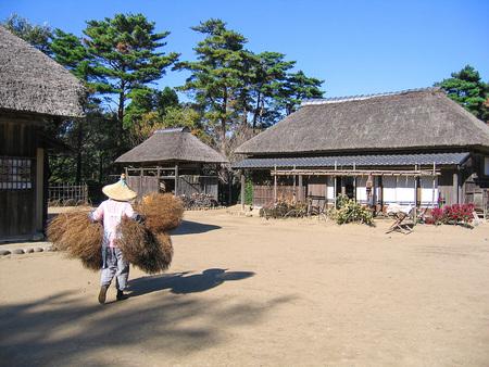 House of farmers
