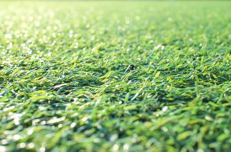 Artificial grass 写真素材