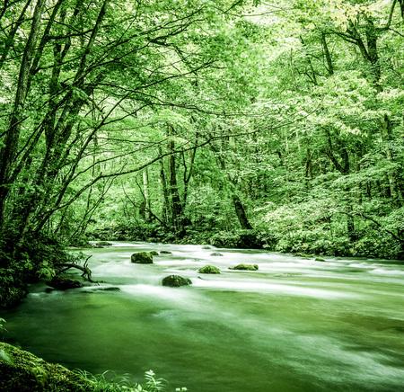 Mountain stream 写真素材