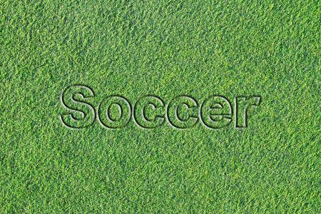 人工芝に関するメッセージ (サッカー) 写真素材 - 100892311