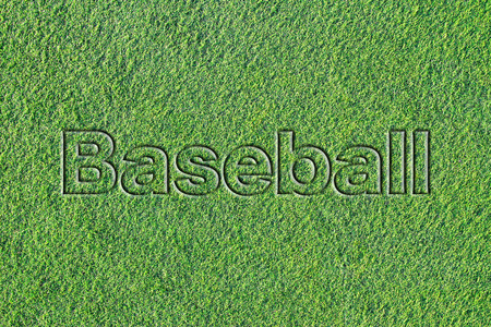 Message on Artificial turf (Baseball) 写真素材 - 103008595