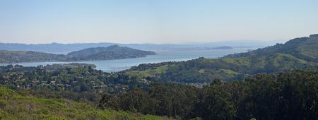 Panoramic view from Muir Woods