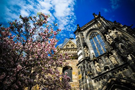 Aachen Cathedral and flowering tree photo