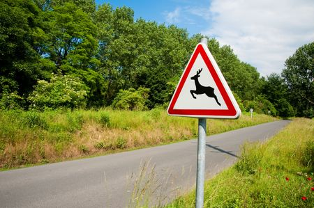 Deer crossing sign and road Stock Photo