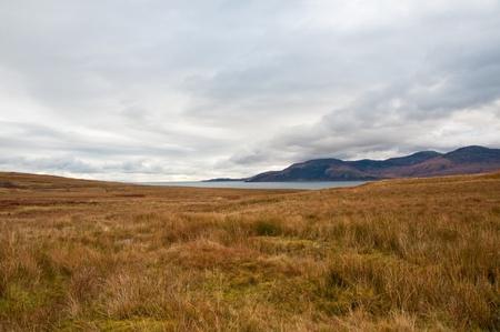 Isle of Jura field Standard-Bild