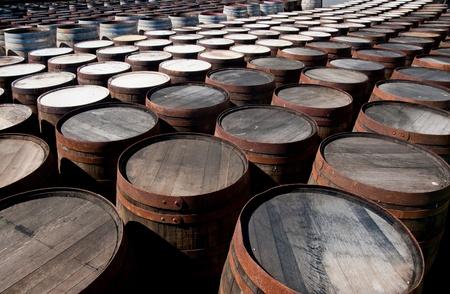Tops of scotch whisky barrels Stock Photo