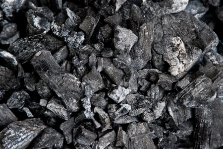 Group of charcoal lumps