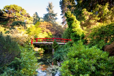 Kubota Garden in Seattle WA photo