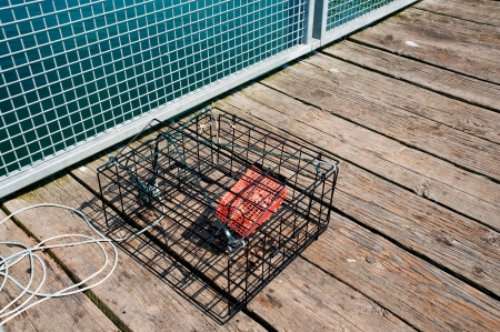 crab pot: Empty crab pot on pier Stock Photo