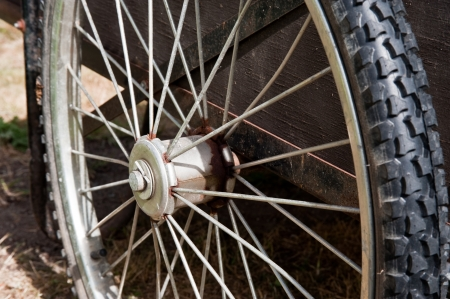 spokes: Close-up of bicycle spokes