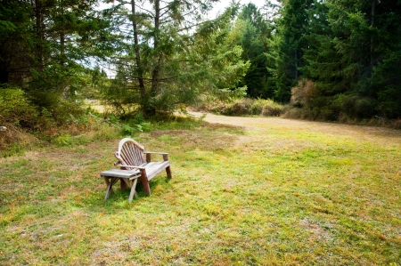 Old bench and table in a field Stock Photo - 17861254