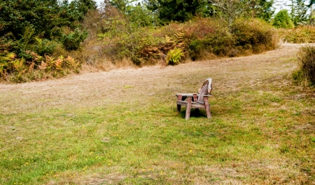 Old bench in a field Stock Photo - 17861233