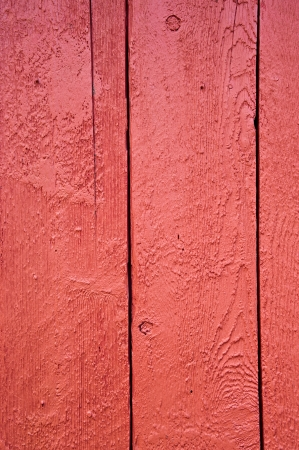 Red shed door detail Stock Photo - 24437066