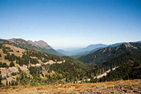 wa: Hurricane Ridge in the Olympic Peninsula