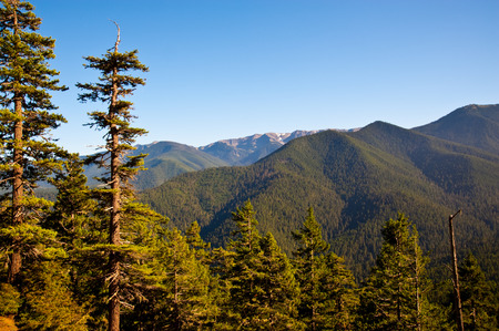 wa: Hurricane Ridge