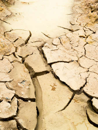 Cracked soil ground photo