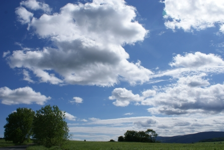 landscape on a hill Reklamní fotografie