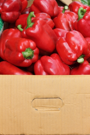 At the market, sweet peppers are delivered in paper box to prevent the damage  While most of vegetables are packed in plastic bag  Stock Photo - 14018033