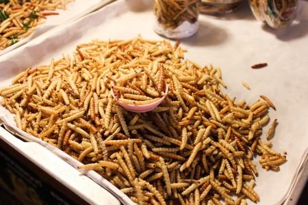Fried bamboo larvae  Stock Photo