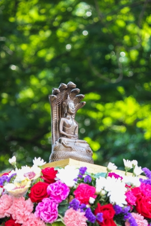 Buddha statue with seven head snakes guardian on flower base and green leaves background photo