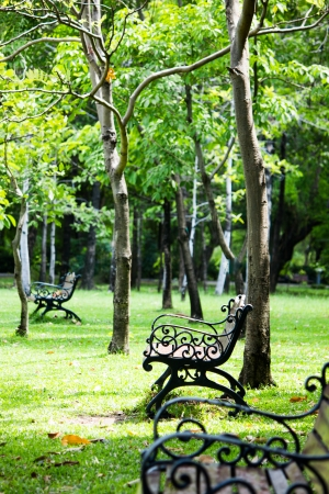 olden day: metal chair in park