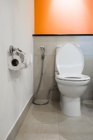 rinse spray hose: modern toilet room
