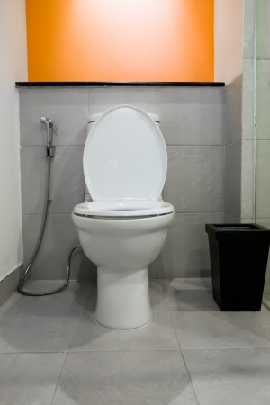 hemorrhoid: modern toilet room