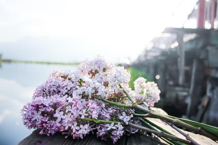 purple lilac flower with dal lake background, srinagar, kashmir, india Stock Photo - 27234128