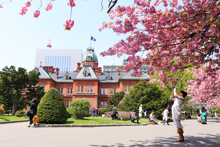SAPPORO, JAPAN- MAY 6, 2015 : Former Hokkaidō overnment Office made of red bricks and its garden with Sakura or Cherry Blossum blooming during Japan Golden Week 2015. This is a popular sightseeing in Hokkaido. Editorial