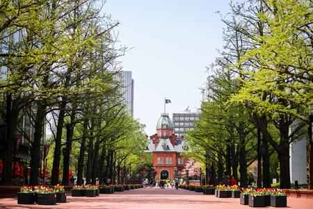 oficina antigua: SAPPORO, JAP�N 06 de mayo 2015: El ex Oficina Hokkaid? obierno de ladrillos rojos y su jard�n con Sakura o cereza Blossum floraci�n durante la Semana Dorada de Jap�n 2015. Se trata de un turismo popular en Hokkaido.