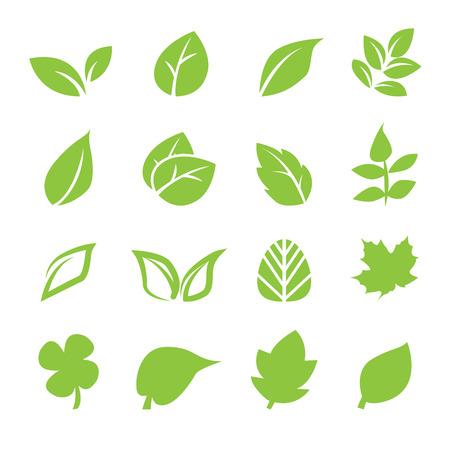 Icône de feuilles  Banque d'images - 32363668
