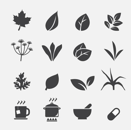 mint leaves: herb icon Illustration