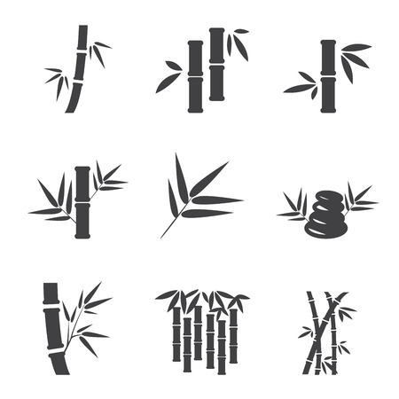 bamboo leaves: bamboo icon