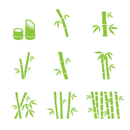 green bamboo: bamboo icon