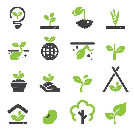 crecimiento planta: Brote de conjunto de iconos