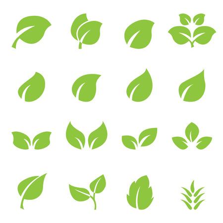vegetate: leaf icon set Illustration