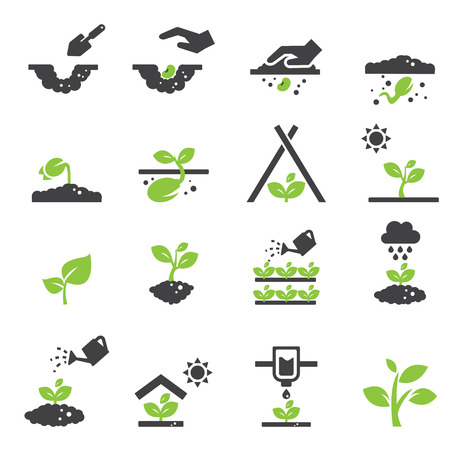 shovel in dirt: plant icon