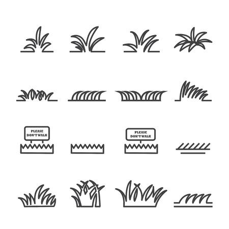 sedge: grass line icon set