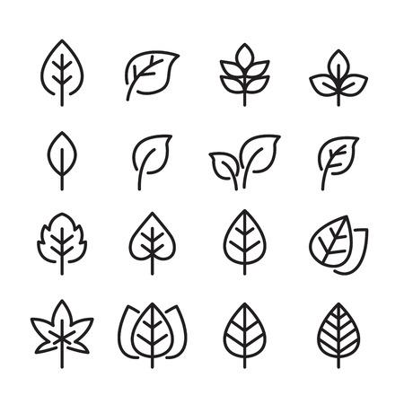leaf line: leaf line icon set Illustration