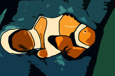 Clown-fish cartoon Stock Photo - 13327704