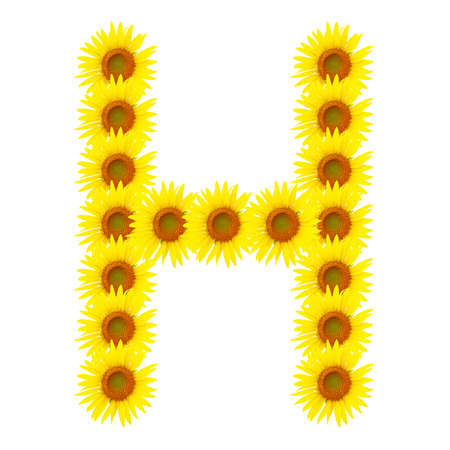 Yellow sunflowers alphabet H