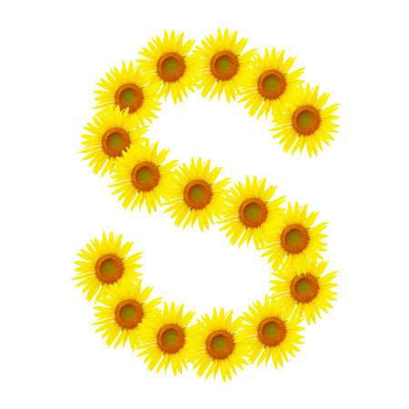 alphabet s: Amarillo girasol alfabeto S Foto de archivo