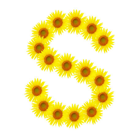 Yellow sunflowers alphabet S photo