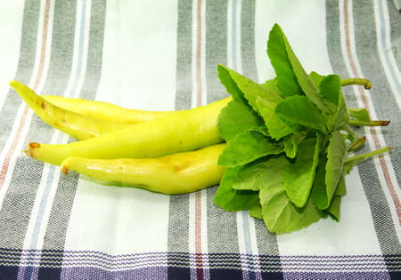 Green pepper and Holy basil