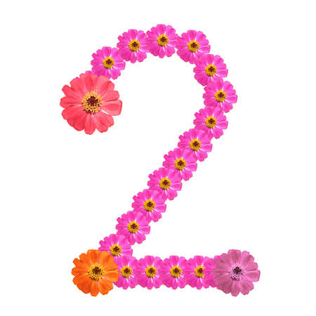 Flower number on isolate. Number two Stock Photo - 14328942