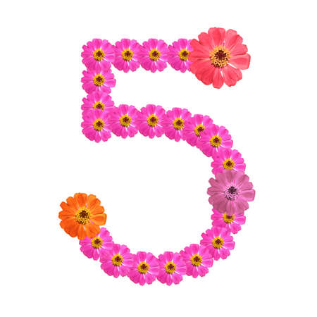 Flower number on isolate. Number five Stock Photo - 14328946