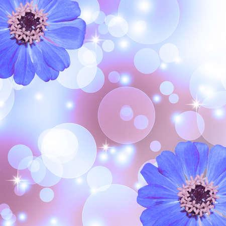 Blue Zinnia flower background Stock Photo