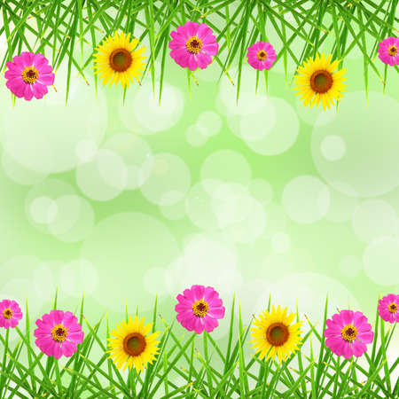 Leaf , Flower and bokeh background Stock Photo - 14580170