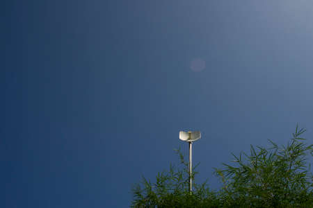 Bamboo plant canopy and a wireless internet antenna with blue sky  background